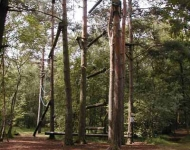 High Ropes Adventure Courses (approx. 4 miles)