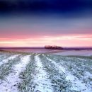 Sunrise over field of snow